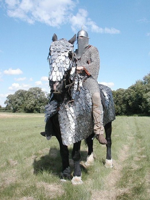 Historical re-enactment of a Sassanid-era cataphract, complete with a full set of scale armor for the horse.