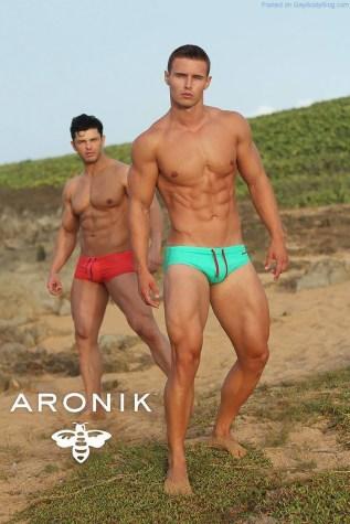 aronikmodels-10