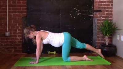Quadruped Workout