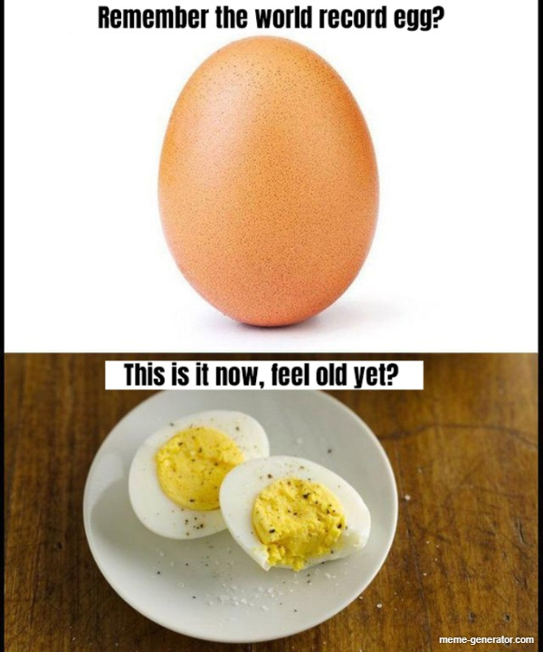 17 Super Weird Egg Memes That Ll Crack You Up Memebase Funny Memes