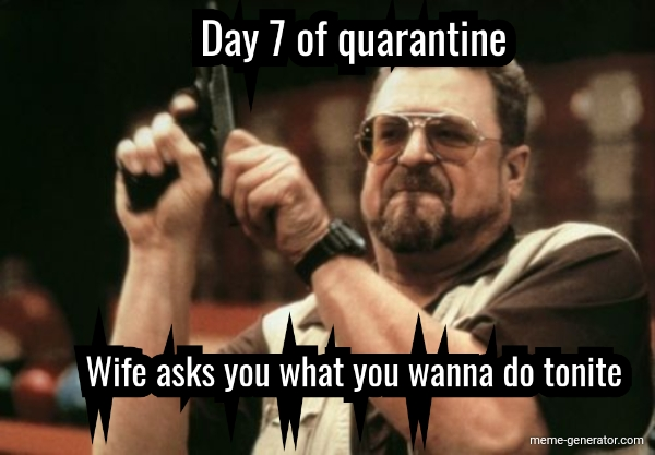 Day 7 Of Quarantine Wife Asks You What You Wanna Do Tonite Meme