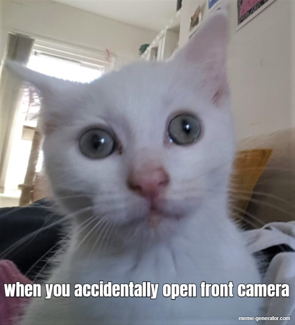 25 Best Memes About Front Camera Front Camera Memes