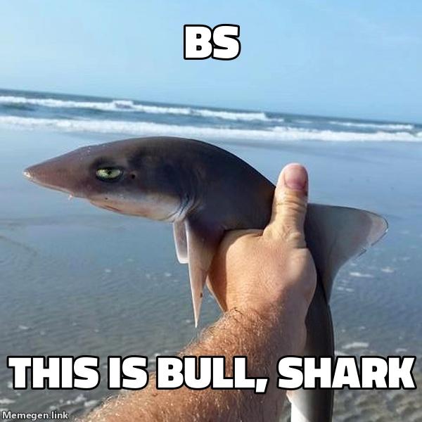 This is Bull, Shark