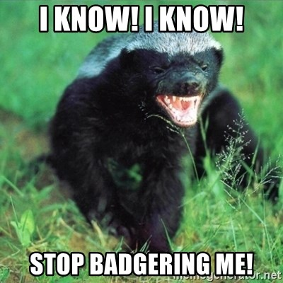 I Know I Know Stop Badgering Me Honey Badger Actual Meme