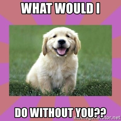 What Would I Do Without You A Level Puppy Meme Generator