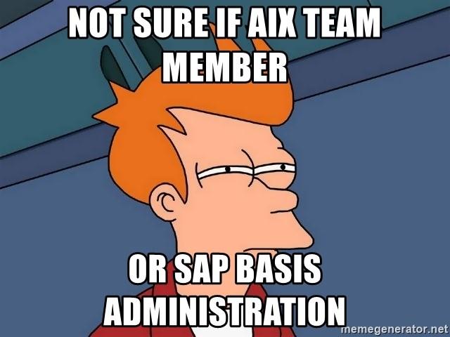 Not Sure If Aix Team Member Or Sap Basis Administration Futurama