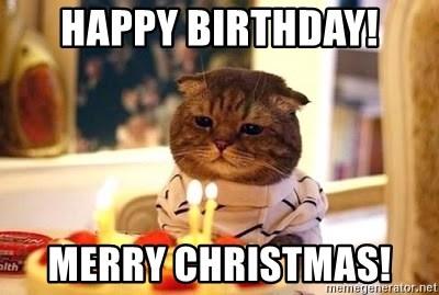 Happy Birthday Merry Christmas Birthday Cat Meme Generator
