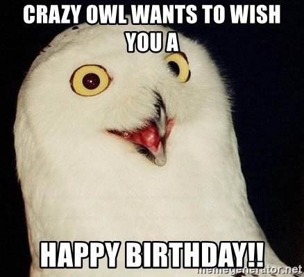 Crazy Owl Wants To Wish You A Happy Birthday Orly Owl Meme Generator