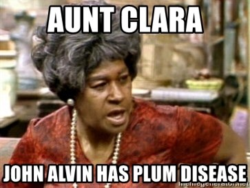 Aunt Clara Having Fun Youtube