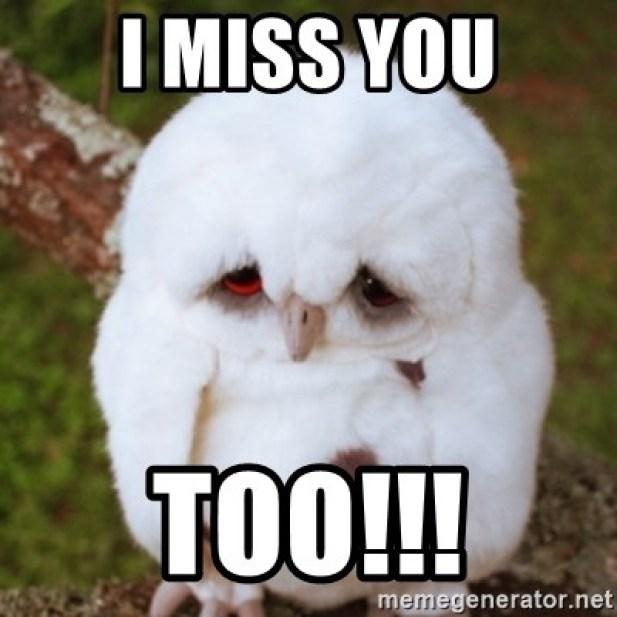 I Miss You Too Meme