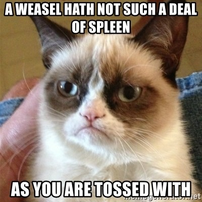 A Weasel Hath Not Such A Deal Of Spleen As You Are Tossed With