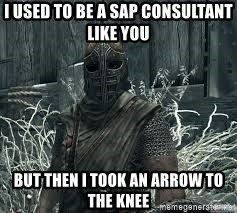 I Used To Be A Sap Consultant Like You But Then I Took An Arrow To