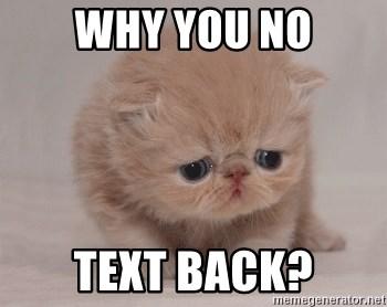 Why You No Text Back Super Sad Cat Meme Generator