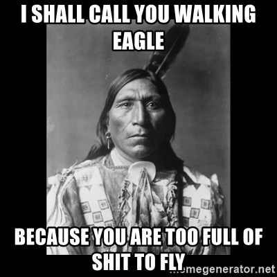 I Shall Call You Walking Eagle Because You Are Too Full Of Shit To
