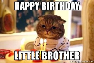 Happy Birthday Little Brother Funny Meme