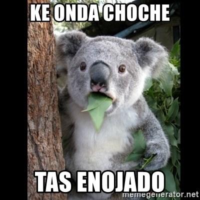 Ke Onda Choche Tas Enojado Koala Can T Believe It Meme Generator