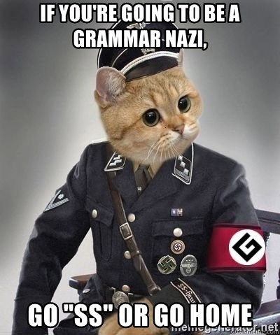 If You Re Going To Be A Grammar Nazi Go Ss Or Go Home Grammar