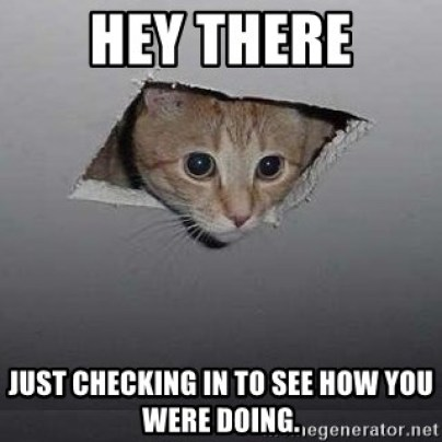 Just Checking On You Meme