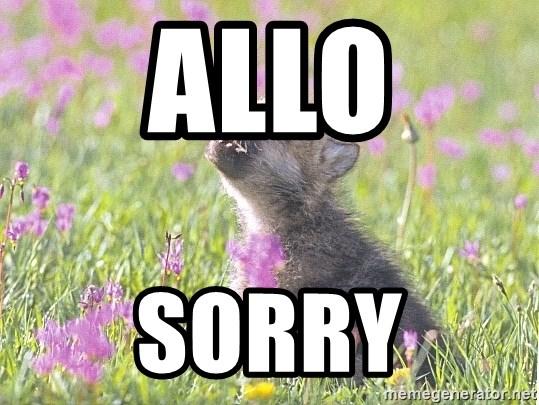Allo Sorry Baby Insanity Wolf Meme Generator