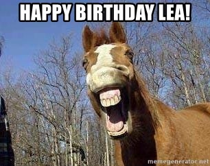 Happy Birthday Lea Horse Meme Generator