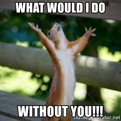 What Would I Do Without You Praising Squirrel Meme Generator