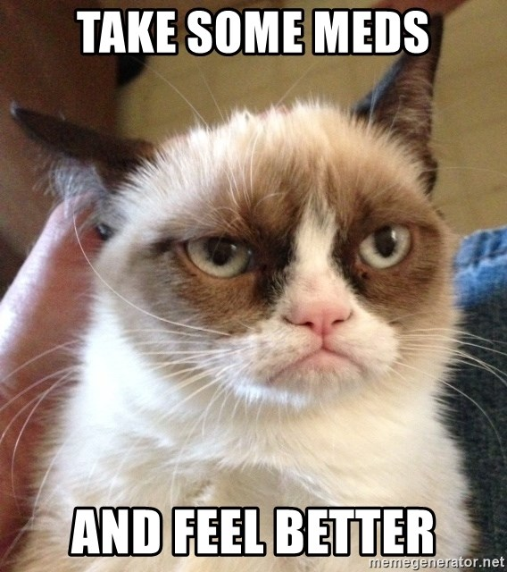 The Essence Of Cattitude Summed Up In 22 Memes Happy Cat Funny Cat Memes Baby Memes