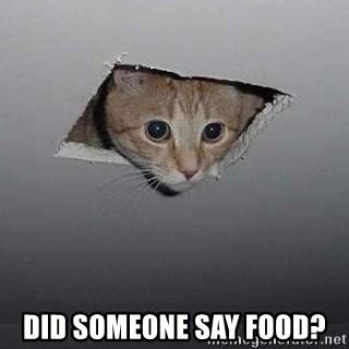 Did Someone Say Food Ceiling Cat Meme Generator