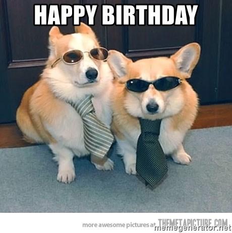 Happy Birthday Corgi Meme Generator