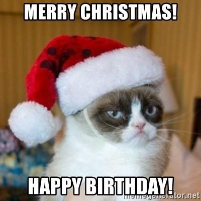 Merry Christmas Happy Birthday Grumpy Cat Santa Hat Meme Generator