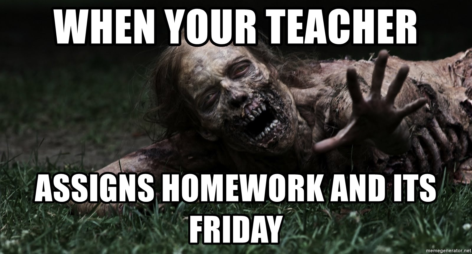 When Your Teacher Assigns Homework And Its Friday Zombie The
