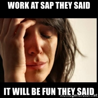 Work At Sap They Said It Will Be Fun They Said First World