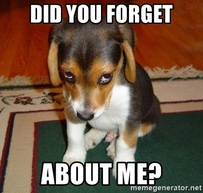 Did You Forget About Me Sad Puppy Meme Generator