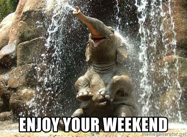 Enjoy Your Weekend Happy Elephant Shower Meme Generator