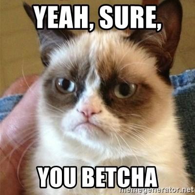Yeah Sure You Betcha Grumpy Cat Meme Generator