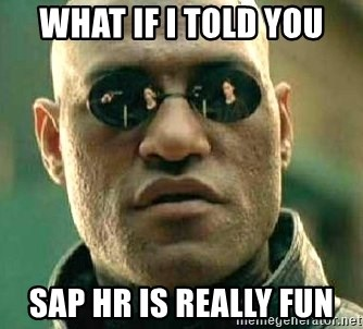 What If I Told You Sap Hr Is Really Fun What If I Told You