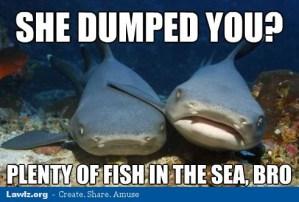 wpid-compassionate-shark-bros-meme-she-dumped-you-plenty-of-fish-in-the-sea.jpg
