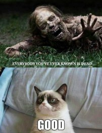 http://catplanet.org/wp-content/uploads/2014/02/Everybody-youve-every-know-is-dead.jpg
