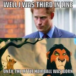 http://cdn.sheknows.com/articles/2013/07/Jules/ROYAL_MEMES/PrinceHarry-LionKing.jpg