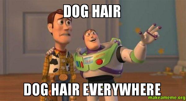 http://makeameme.org/media/created/Dog-Hair-Dog-cr62sx.jpg