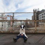 カンヌ映画祭の胸を露出した中国人の女性モデルは誰?なぜ乱入した?