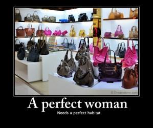 perfect woman meme