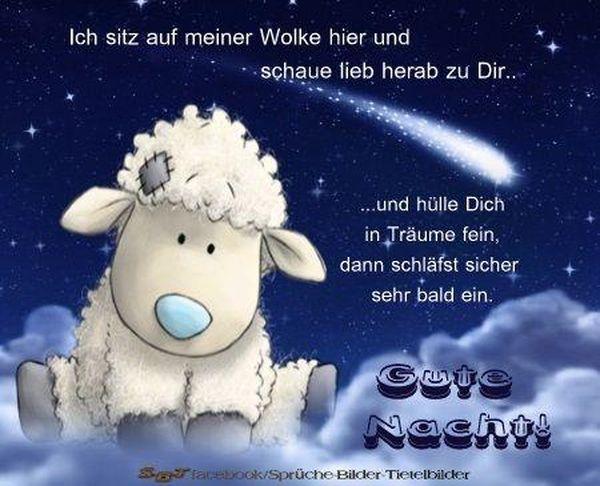 Gute Nacht Spruche Lustig Bilder Kostenlos Gute 2020 03 01
