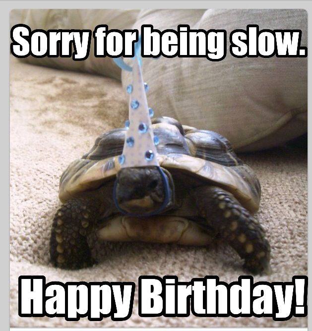 19 Funny Happy Belated Birthday Meme Pictures Collection Memesboy
