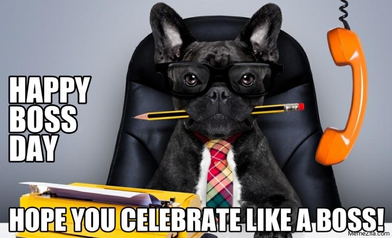 Happy boss day Hope you celebrate like a boss meme - MemeZila.com