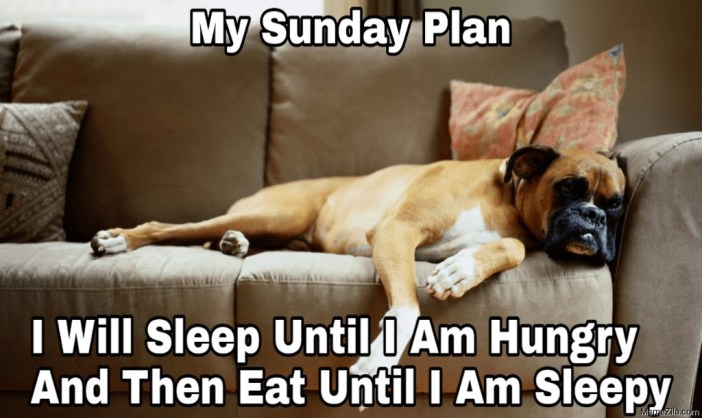 Have a lazy Sunday meme - MemeZila.com