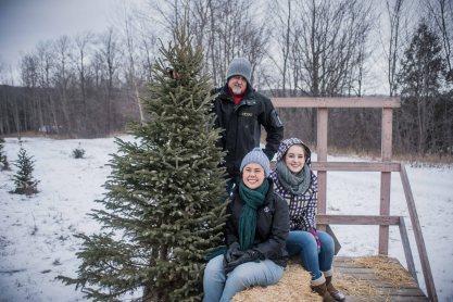 to-kill-a-christmas-tree-10