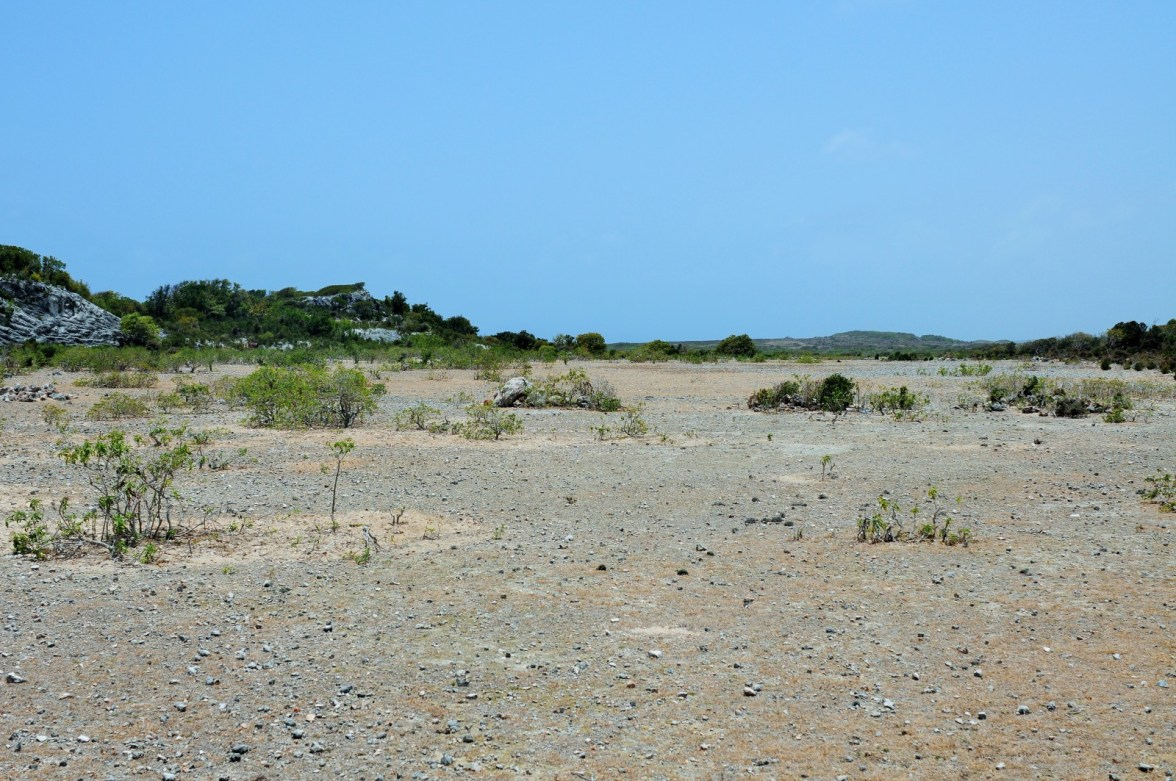And had they alighted (which they didn't), they would have seen the remains of this dust airstrip, except the runway wouldn't have been blocked with stones–that didn't happen until the 1980s, when the DEA took the islet by storm