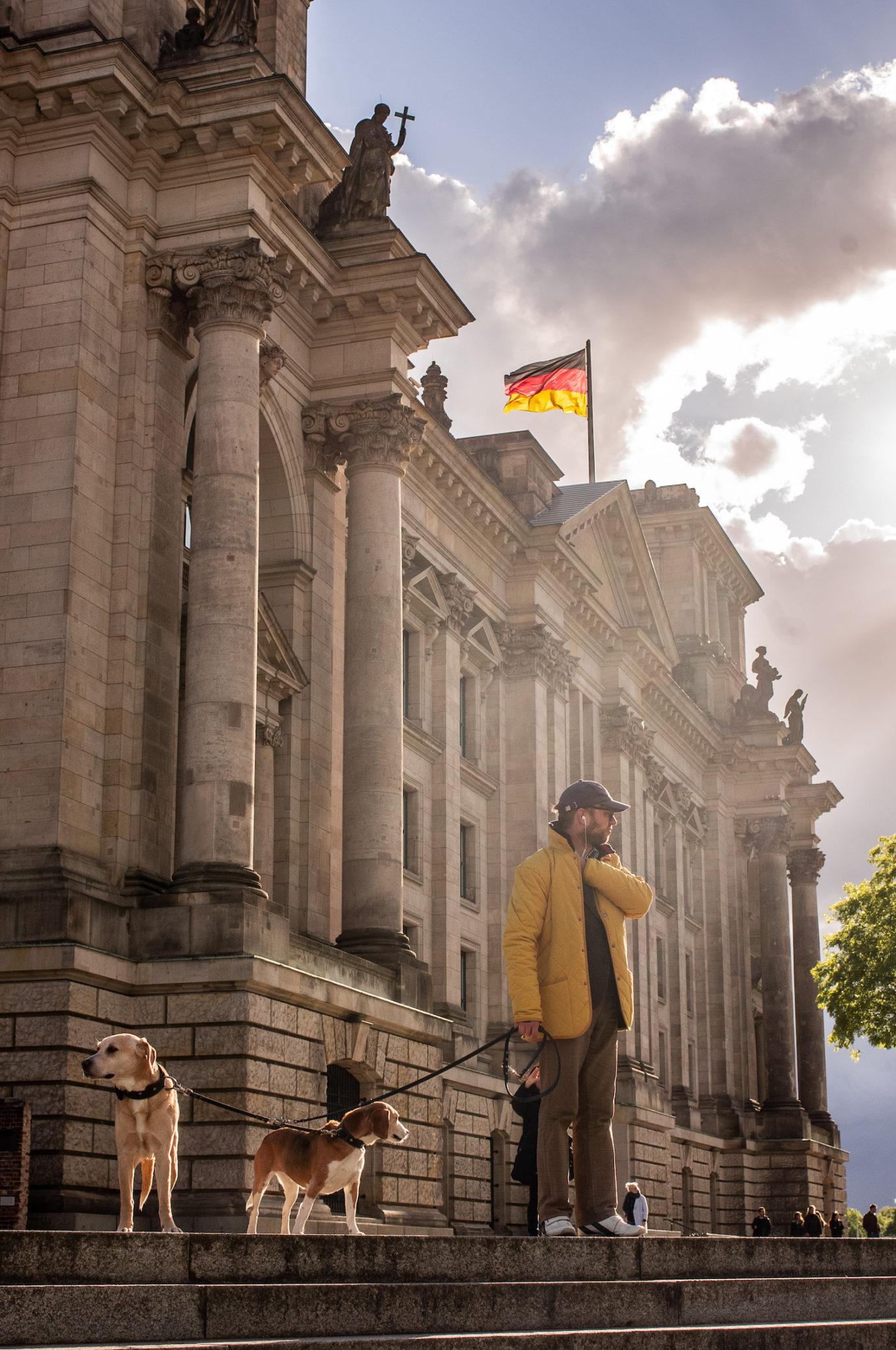 Un promeneur et ses chiens devant le Reichstag à Berlin