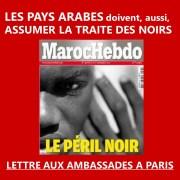 ASSUMER LEUR PASSÉ NÉGRIER- Les pays arabes appelés à la mémoire de l'esclavage