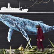 LIMOGES – L'expo sur les tirailleurs naufragés présentée au quartier Beaubreuil (4 au 29 mai)